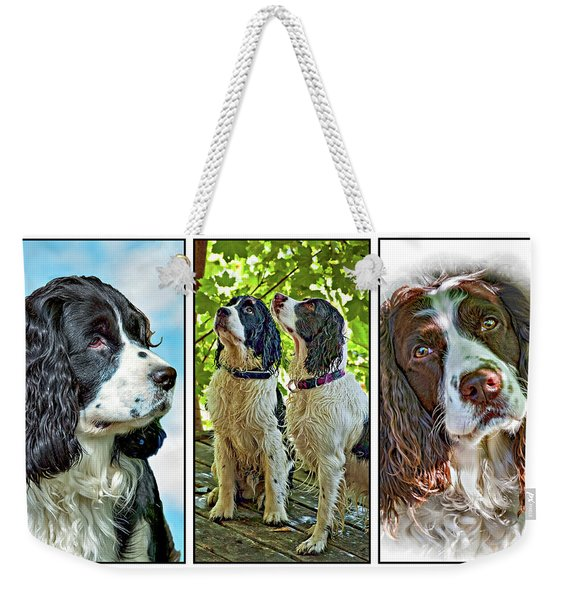 English Springer Spaniel Triptych Weekender Tote Bag