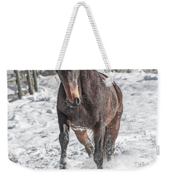 Equine Snowy Frolic  Weekender Tote Bag