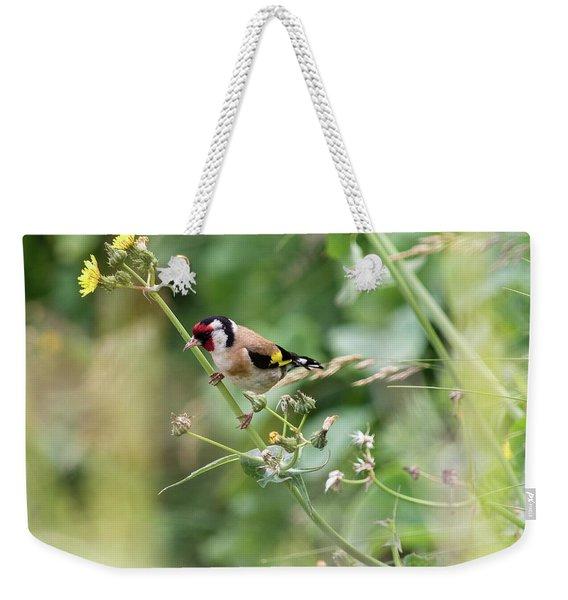 European Goldfinch Perched On Flower Stem B Weekender Tote Bag