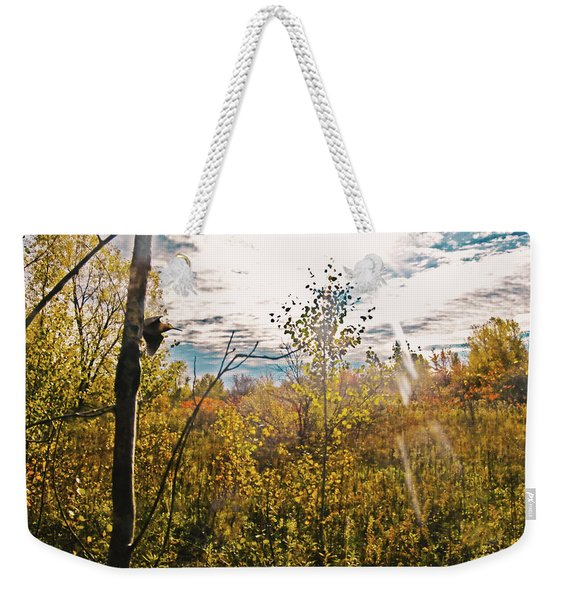 Evanescent Dreams Of Autumn Weekender Tote Bag