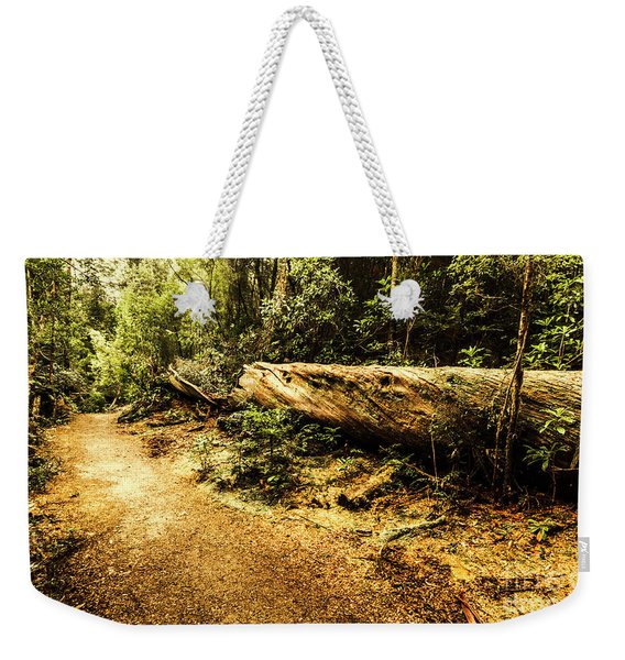 Evergreen Jungle Trails Weekender Tote Bag