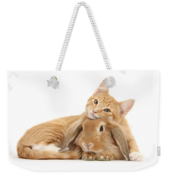 Everybody Needs A Bunny For A Pillow Weekender Tote Bag