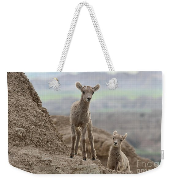 Explorations Of Youth Weekender Tote Bag