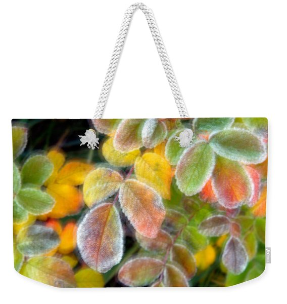 Weekender Tote Bag featuring the photograph Eye Candy by Doug Gibbons