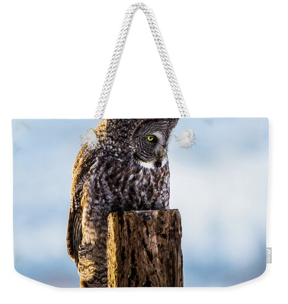 Eye On The Prize - Great Gray Owl Weekender Tote Bag