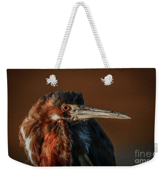 Weekender Tote Bag featuring the photograph Eye To Eye With Heron by Tom Claud