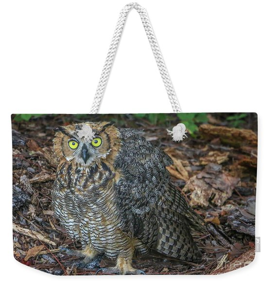 Weekender Tote Bag featuring the photograph Eye To Eye With Owl by Tom Claud