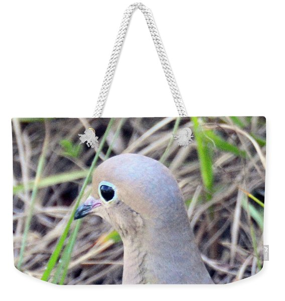 Weekender Tote Bag featuring the photograph Eyeliner And All by Sally Sperry