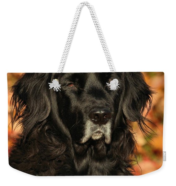 Eyes Of Autumn Weekender Tote Bag