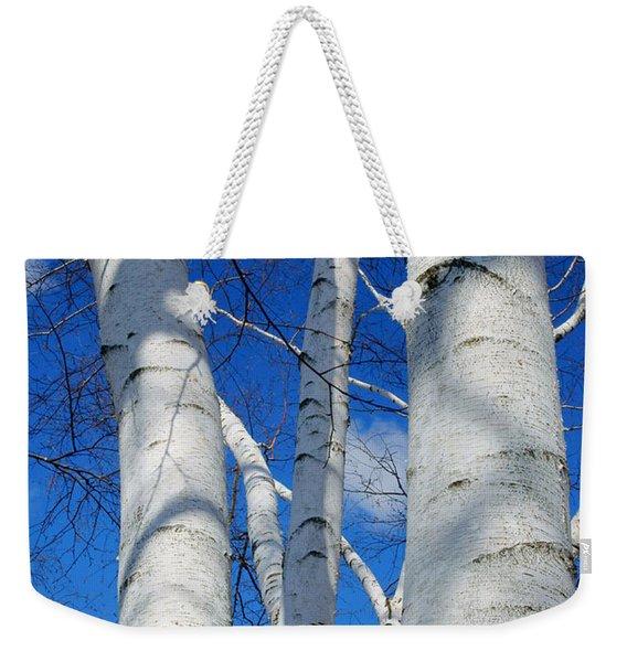 Eyes Of Birch Weekender Tote Bag
