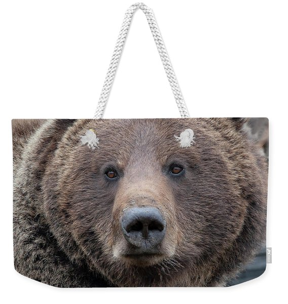 Face Of The Grizzly Weekender Tote Bag
