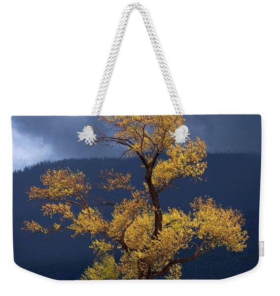 Facing The Storm Weekender Tote Bag