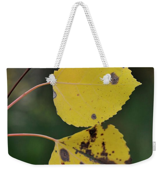 Weekender Tote Bag featuring the photograph Fading Aspen I by Ron Cline