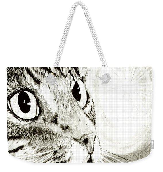 Fairy Light Tabby Cat Drawing Weekender Tote Bag