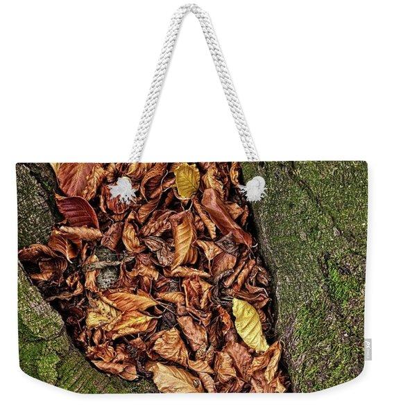 Fall Beech Tree Leaves Weekender Tote Bag