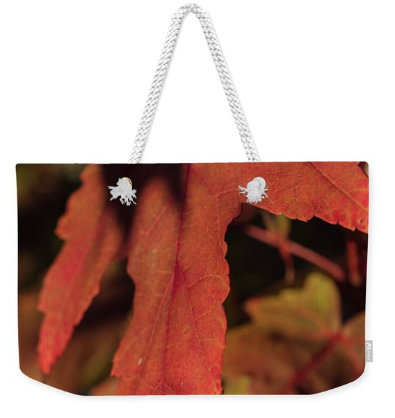 Fall Color 5528 16 Weekender Tote Bag