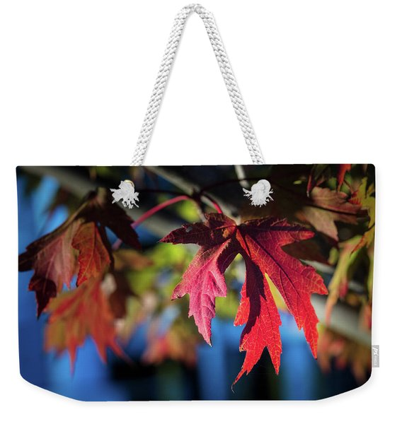 Fall Color 5528 19 Weekender Tote Bag