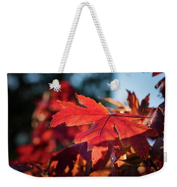 Fall Color 5528 23 Weekender Tote Bag