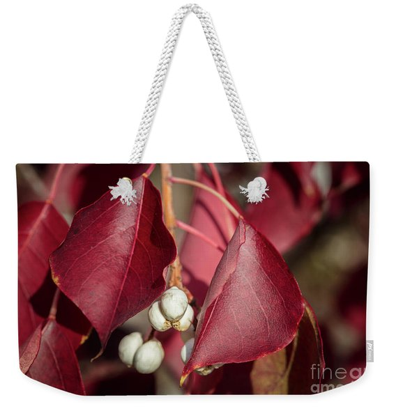 Fall Color 5528 27 Weekender Tote Bag
