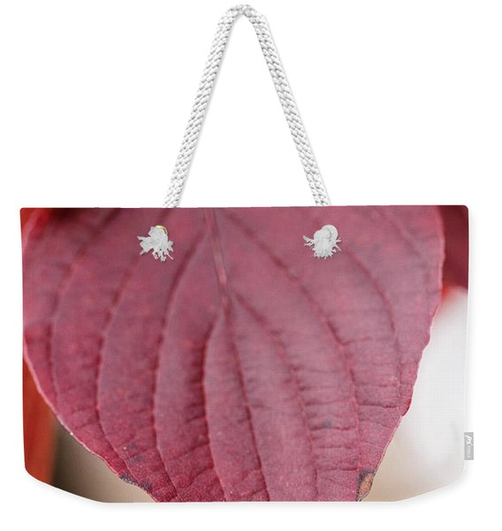 Fall Color 5528 52 Weekender Tote Bag
