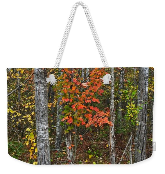 Fall Color At Gladwin 4543 Weekender Tote Bag
