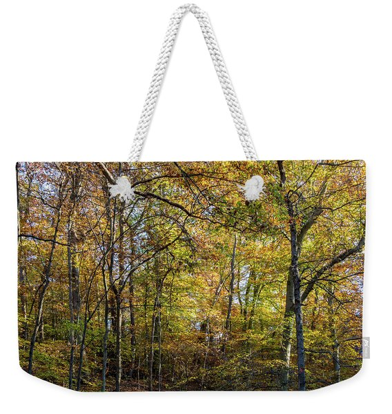 Fall Colors Of Rock Creek Park Weekender Tote Bag