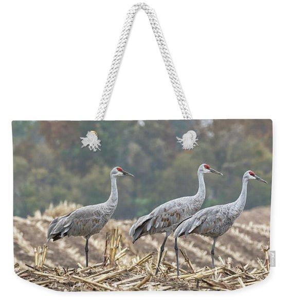 Fall Cranes 2016 Weekender Tote Bag