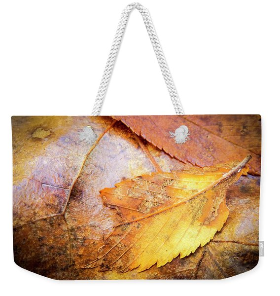 Fall Elm Leaves Weekender Tote Bag