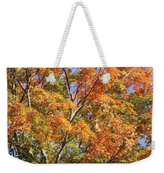 Weekender Tote Bag featuring the photograph Fall Gradient by William Selander