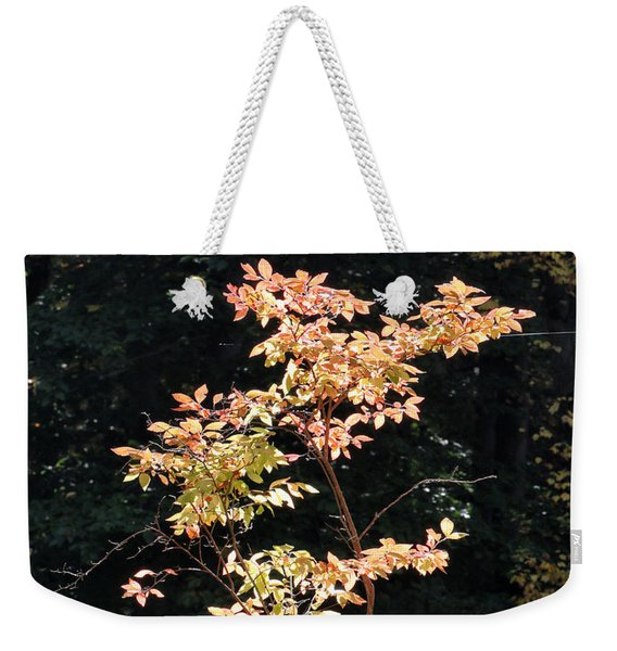 Weekender Tote Bag featuring the photograph Fall Illumination by William Selander