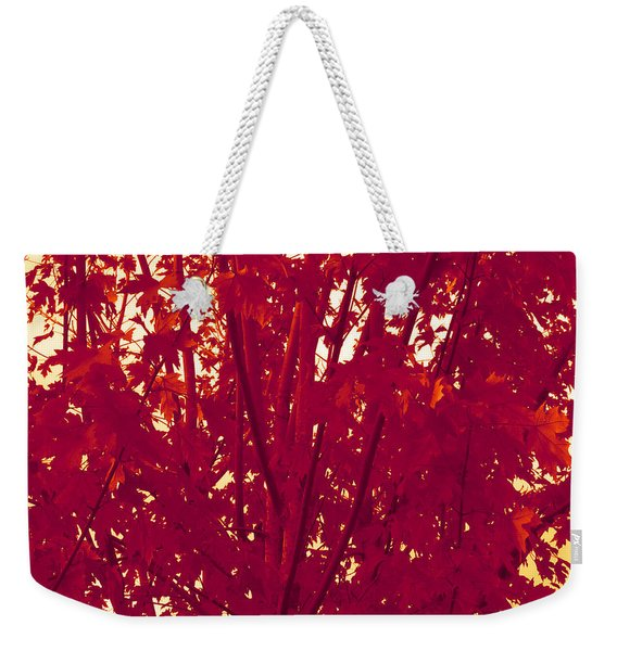 Fall Leaves #2 Weekender Tote Bag