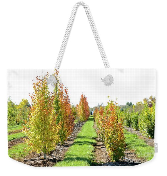 Fall On The Tree Farm Weekender Tote Bag