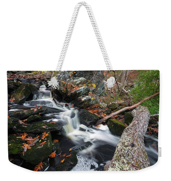 Fallen In Danforth Falls Weekender Tote Bag