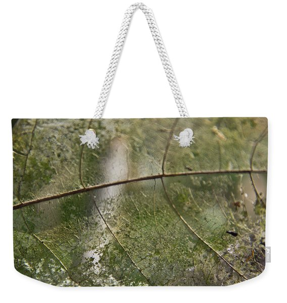 Weekender Tote Bag featuring the photograph fallen Leaf by Debbie Cundy