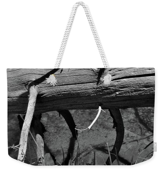 Weekender Tote Bag featuring the photograph Fallen Spruce by Ron Cline