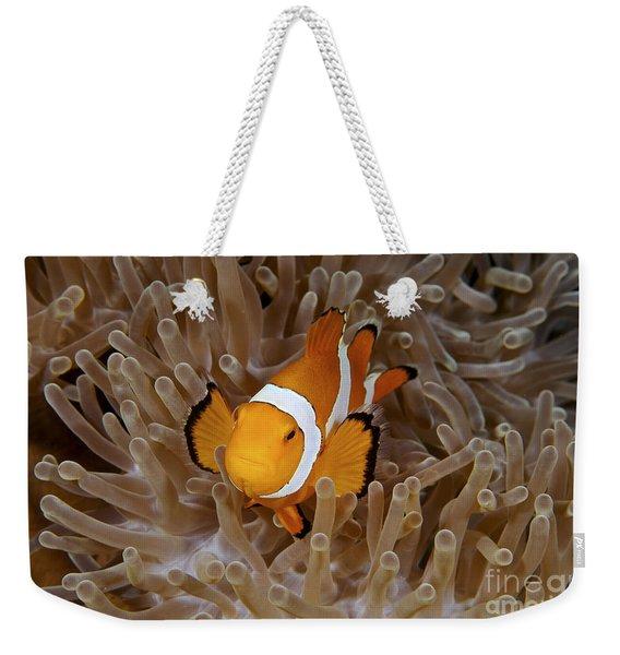 False Clownfish Weekender Tote Bag