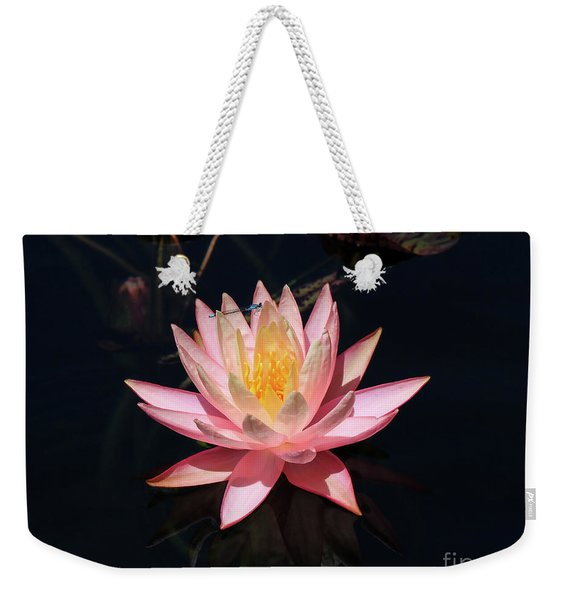 Familiar Bluet Damselfly And Lotus  Weekender Tote Bag