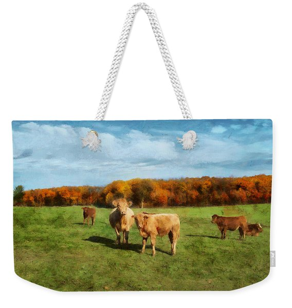 Farm Field And Brown Cows Weekender Tote Bag