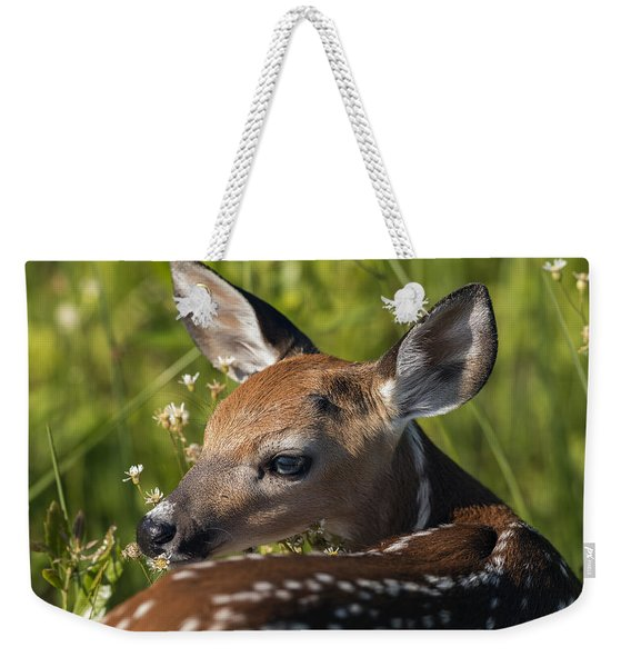 Fawn Over The Shoulder Weekender Tote Bag