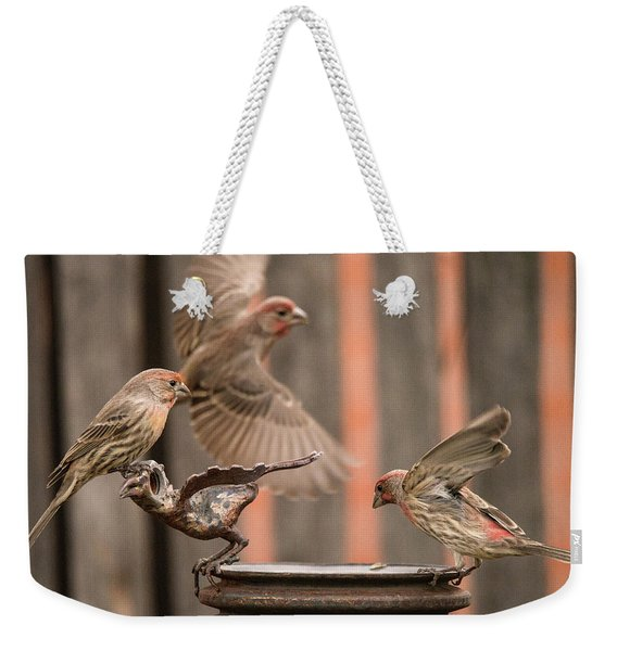 Feeding Finches Weekender Tote Bag