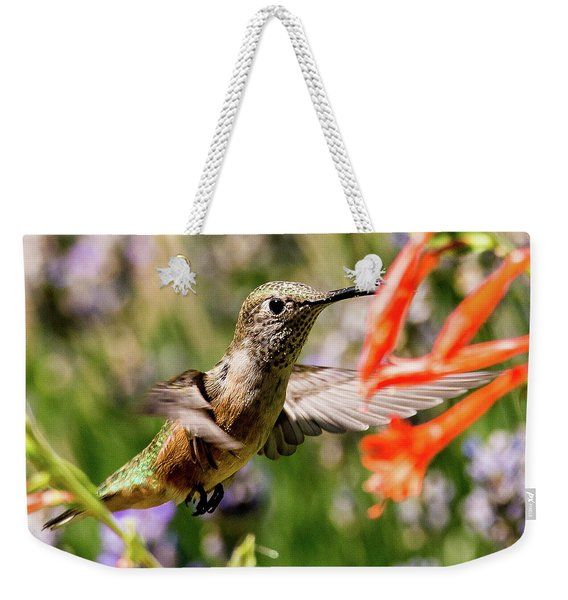 Female Broadtail Humingbird Weekender Tote Bag
