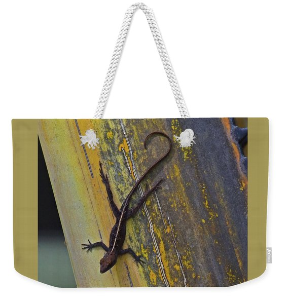 Weekender Tote Bag featuring the photograph Female Brown Anole by Sally Sperry