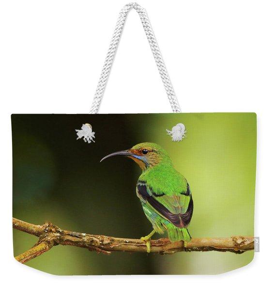 Female Green Honeycreeper At Trinidad's Asa Wright Weekender Tote Bag