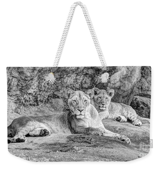 Female Lion And Cub Bw Weekender Tote Bag
