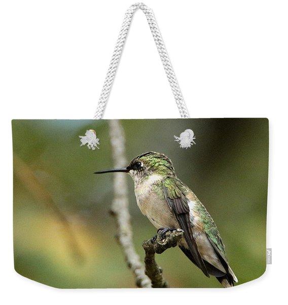Female Ruby-throated Hummingbird On Branch Weekender Tote Bag