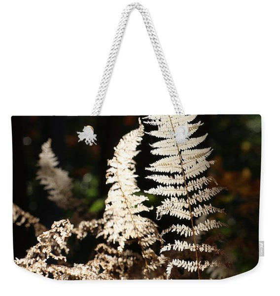 Weekender Tote Bag featuring the photograph Fern Glow 2 by William Selander