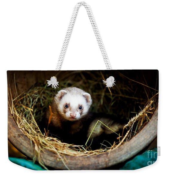 Ferret Home In Flower Pot  Weekender Tote Bag