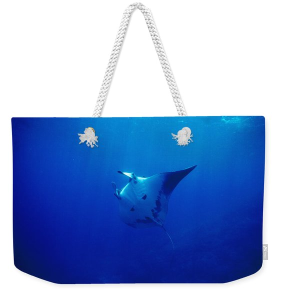 Fiant Pacific Manta Ray Profile, Manta Weekender Tote Bag