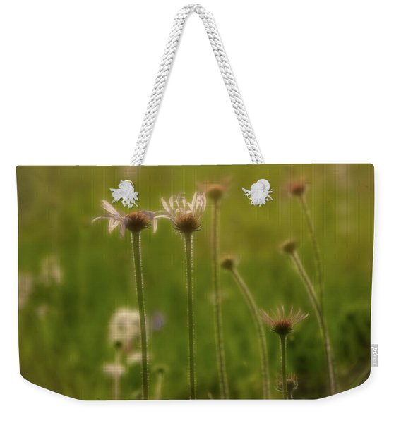 Field Of Flowers 2 Weekender Tote Bag