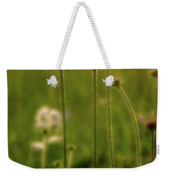 Field Of Flowers 3 Weekender Tote Bag